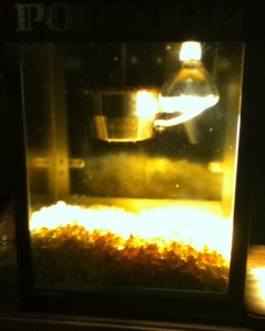 popcorn machine-bmp[1]